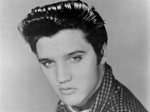 Locks like Elvis. Going to be HUGE in 2015 . You heard it here first.